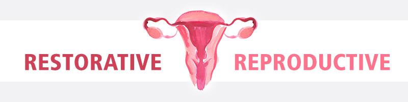 Restorative Reproductive Surgery